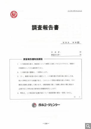 調査報告書(サンプル)1