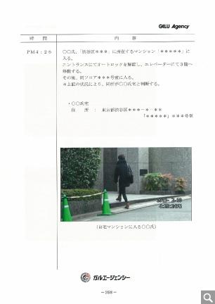 調査報告書(サンプル)17